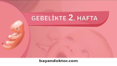Photo of 2. Hafta Gebelik – Hafta Hafta Hamilelik0 (0)