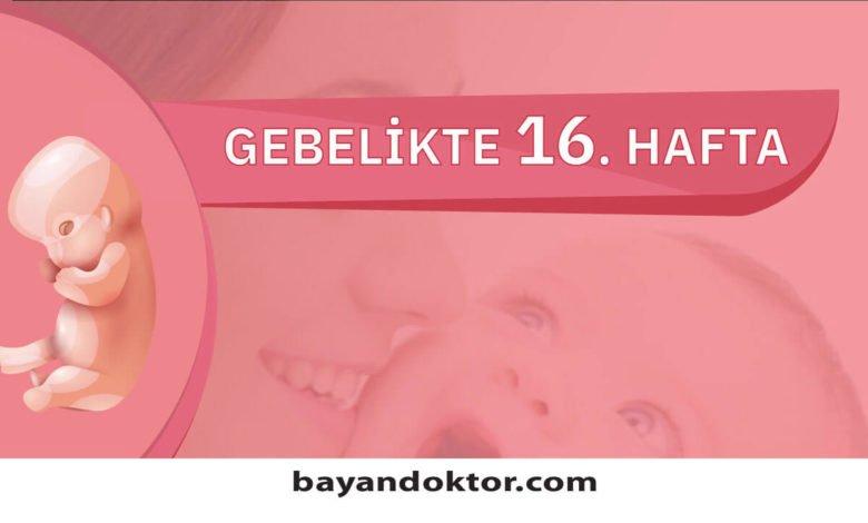 16. Hafta Gebelik – Hafta Hafta Hamilelik