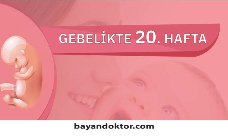20. Hafta Gebelik – Hafta Hafta Hamilelik