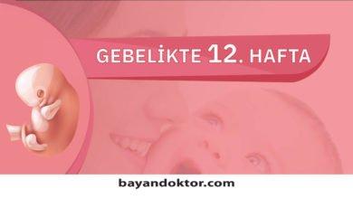 Photo of 12. Hafta Gebelik – Hafta Hafta Hamilelik0 (0)
