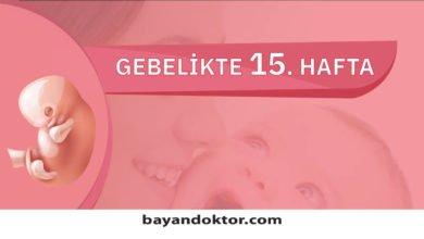 Photo of 15. Hafta Gebelik – Hafta Hafta Hamilelik0 (0)