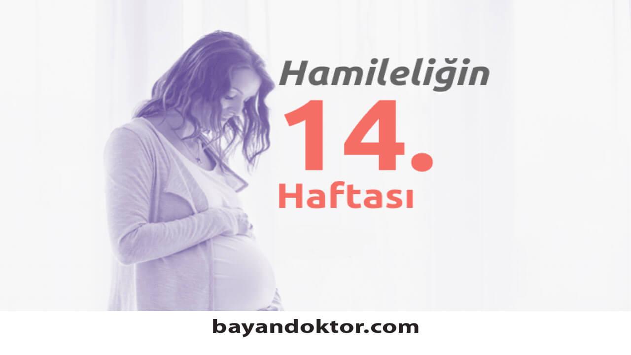 14. Hafta Gebelik – Hafta Hafta Hamilelik