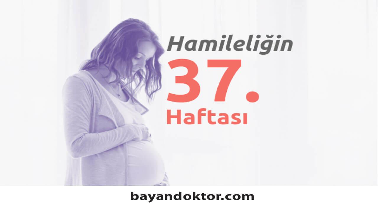 37. Hafta Gebelik – Hafta Hafta Hamilelik