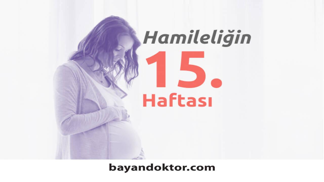 15. Hafta Gebelik – Hafta Hafta Hamilelik