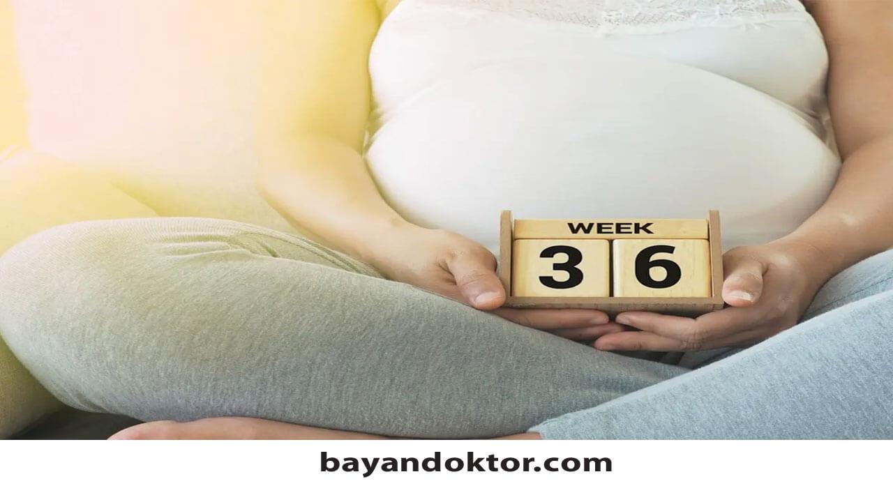 36. Hafta Gebelik – Hafta Hafta Hamilelik