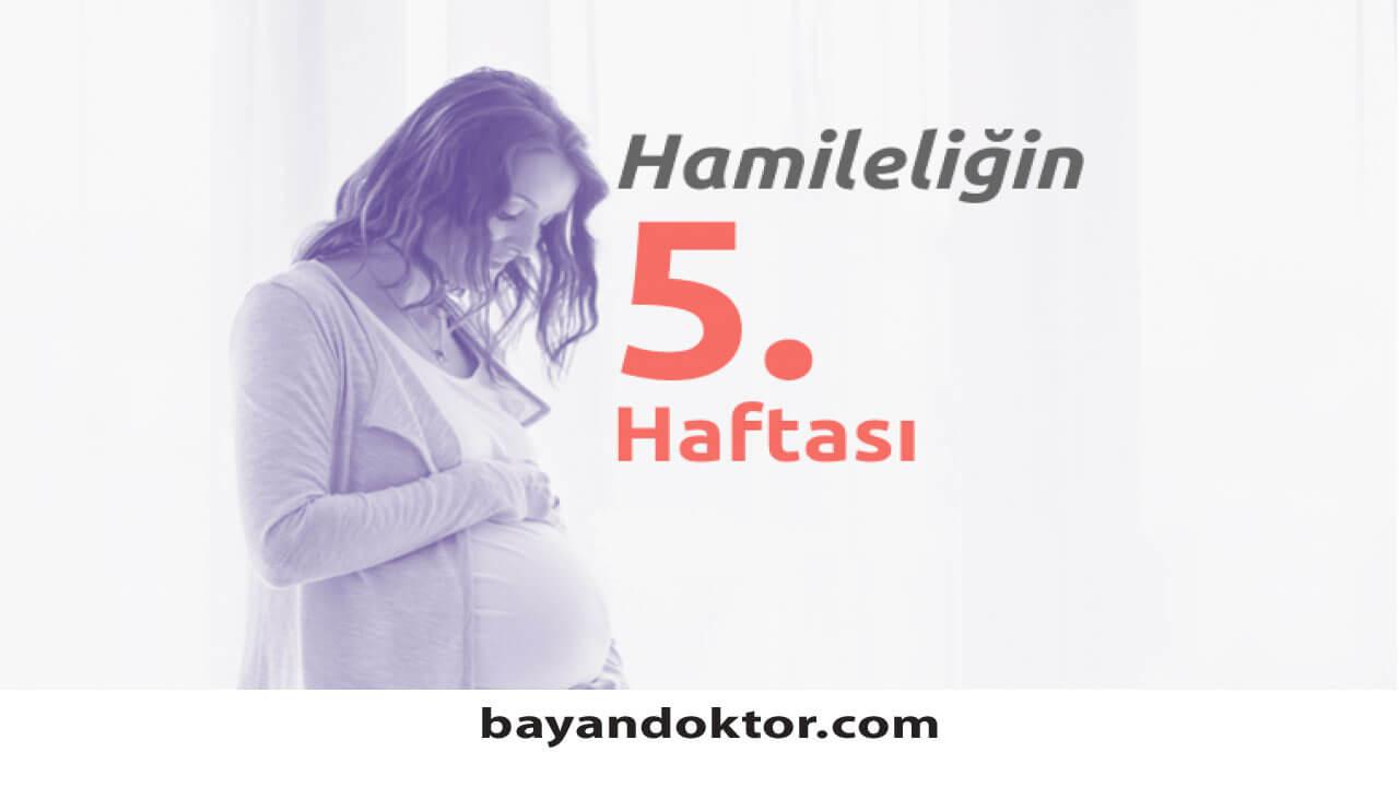 5. Hafta Gebelik – Hafta Hafta Hamilelik