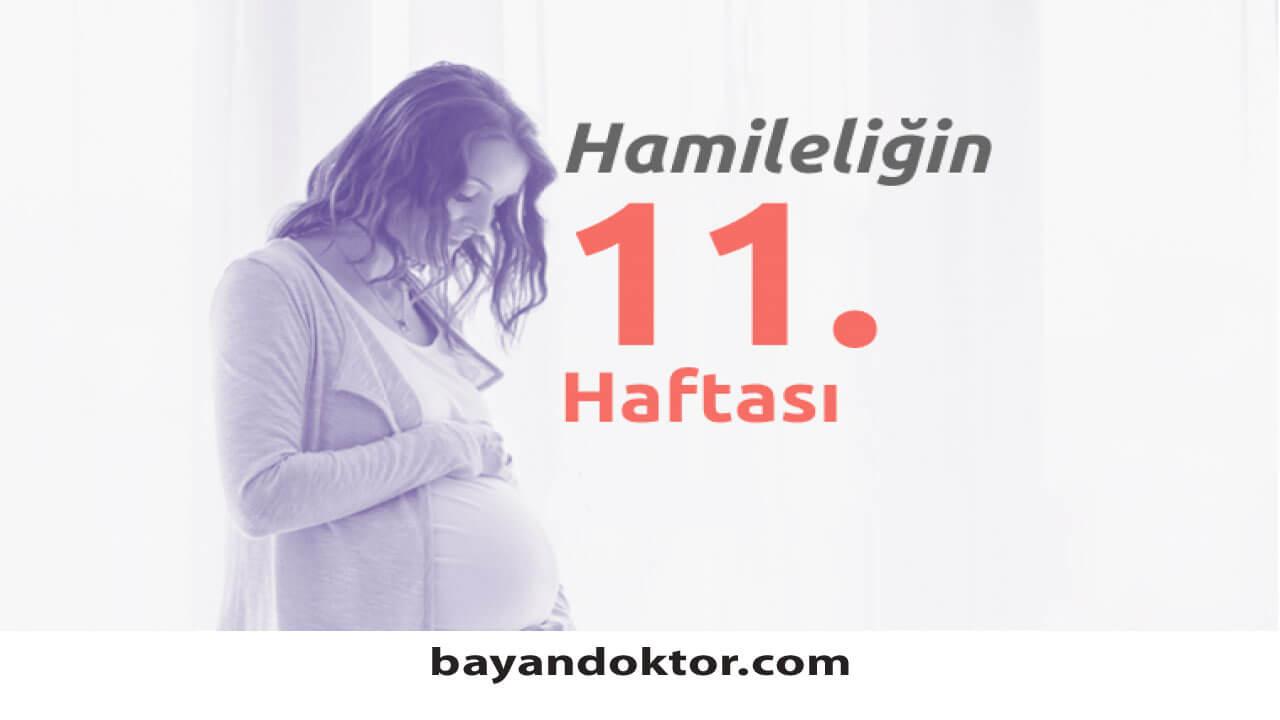 11. Hafta Gebelik – Hafta Hafta Hamilelik