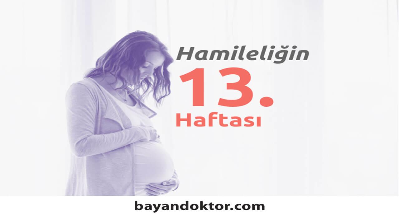 13. Hafta Gebelik – Hafta Hafta Hamilelik