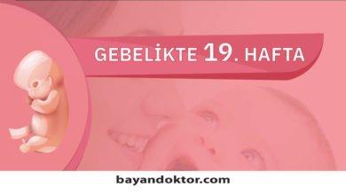 Photo of 19. Hafta Gebelik – Hafta Hafta Hamilelik0 (0)