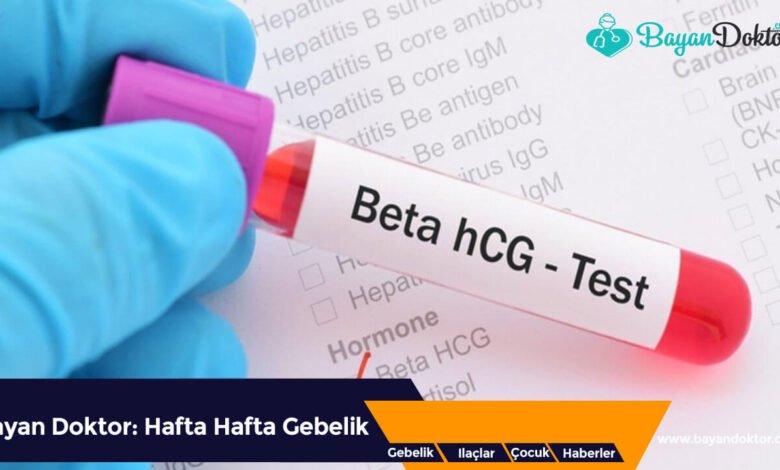 Beta hCG Testi Nedir? Fiyatları Nelerdir?